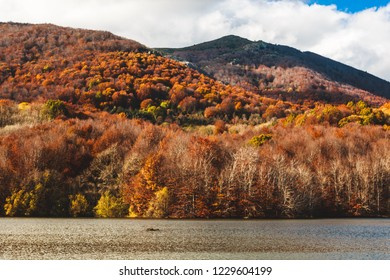 Amazing autumn landscape in Spain. Colourfull forest and lake in Montseny, Catalonia