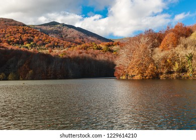 Amazing autumn landscape in Spain. Colourfull forest and lake in Parc Natural del Montseny, Catalonia