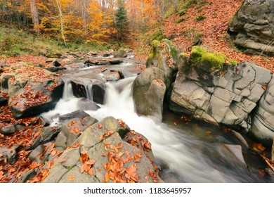 Amazing autumn mountains scene, water stream between stones in morning sunlight, fast river in golden autumn forest, magnificent nature background, Europe, Ukraine, Karpaty