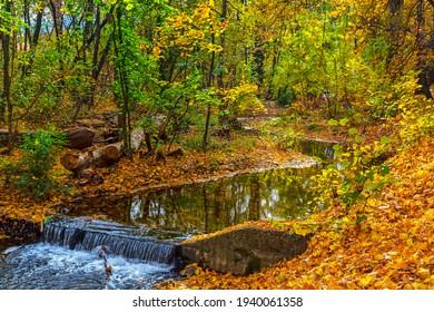 Amazing autumn view of Perlovska reka river, Sofia, Bulgaria - Shutterstock ID 1940061358