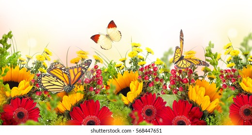 Amazing background with daisies and sunflowers. Yellow and red flowers on a white blank. Floral nature card. Flower and butterfly bokeh.