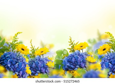 Yellow flower border images stock photos vectors shutterstock amazing background with hydrangeas and daisies yellow and blue flowers on a white blank mightylinksfo