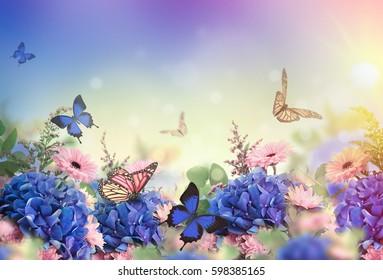 Erstaunlicher Hintergrund mit Hydrangen und Gänseblümchen. Gelbe und blaue Blumen auf weißem Leder. Blumenkarten-Natur. Bokeh-Schmetterlinge.