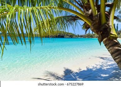 Amazing beach, Isle of Pines, New Caledonia, Dec 2016
