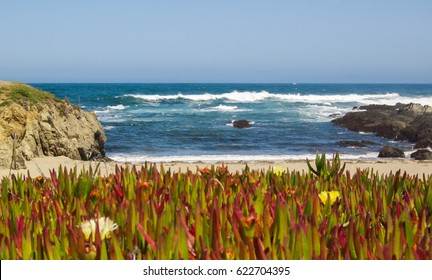 Amazing beach view of the Pacific Ocean in Northern California
