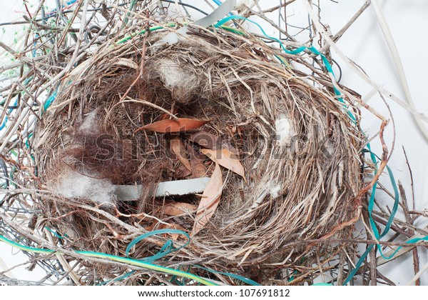An amazing Bird Nest filled with unusual items, wire, cable, metal