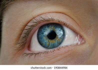 Amazing blue eye. High definition image.