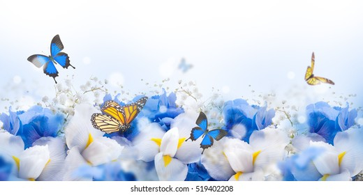 Amazing butterfly fairy of flowers, hydrangeas and iris.