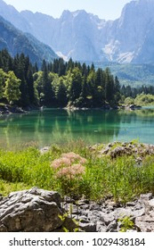 Amazing colors of alpine lakes Fusine park with mountains on background. Tarvisio, Friuli Venezia Giulia, Italy