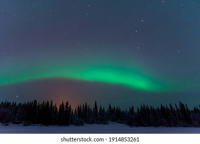 An amazing display show of northern lights seen in winter time with snow covered trees below the bands of aurora borealis above in wilderness scene on a frozen lake.