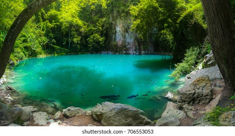 Amazing emerald pool in Lampang Thailand, Lom Phu Khew