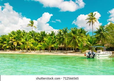 Amazing exotic coast of Dominican Republic with high palms, colorful boats and azure water, Dominican Republic, Caribbean Islands, Central America.
