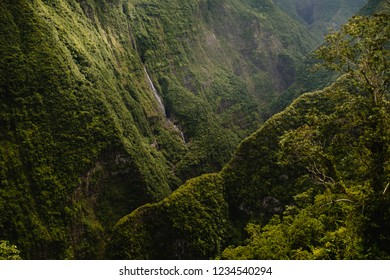 Amazing forest and waterfall in Reunion Island, a tropical paradise