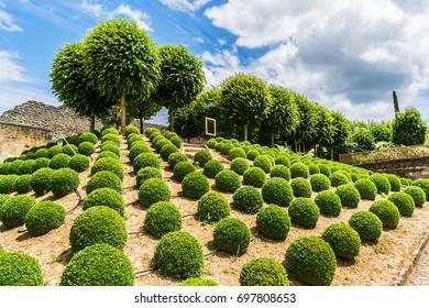 Amazing garden near Chateau d'Amboise (late 15th century); UNESCO World Heritage Site. Amboise, Indre-et-Loire, Loire Valley, France.