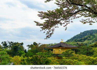 Amazing golden temple pavillion in the garden when spring with cloudy sky, Kinkakuji is zen buddhist temple and very famous travel destination in Kyoto, japan travel and tourism concept.