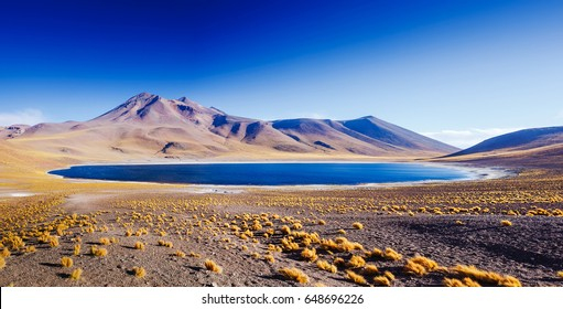 Amazing Lake Miscanti in the highlands of Chile near San Pedro de Atacama