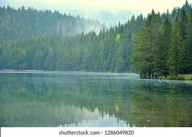 An amazing lake in the mountain - The black lake, Zabljak Montenegro