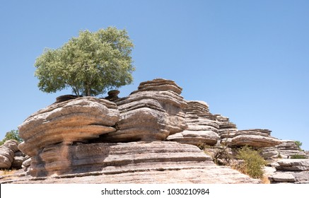 Amazing landscape of El Torcal de Antequera, known for its unusual landforms and is one of the most impressive karst landscapes.