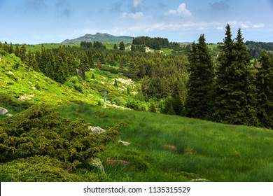 Amazing Landscape with green hills at Vitosha Mountain, Sofia City Region, Bulgaria
