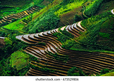 Amazing landscape in Northwest Vietnam. Terraced fields in Ta Xua, Bac Yen, Son La province, Vietnam.  At an altitude of 2000m above sea level, this place is also known by the name: Clouds Paradise.