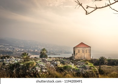 Amazing landscape view of Byblos, traditional house, rocks, palms trees, mountains in the background. Haze warm light in Lebanon