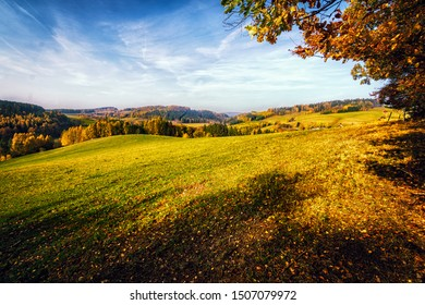 Amazing late summer afternoon in countryside. Fresh colors, shadows, blue skies and few clouds. Peaceful, relaxing and beautiful rural scene. Autumn is one of the most amazing seasons of the year.