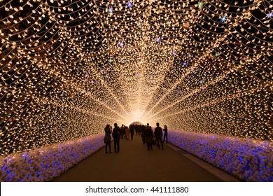 Amazing light tunnels at Nabana no Sato