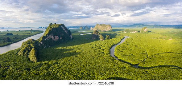 Amazing mangrove forest with beautiful sunlight at Phang-Nga bay, Thialand, Panorama view