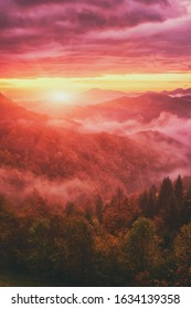 Amazing misty sunrise with rising sun over the alpine wooded mountain ridge, scenic landscape, outdoor travel background, Alps mountains, Slovenia. Vertical image