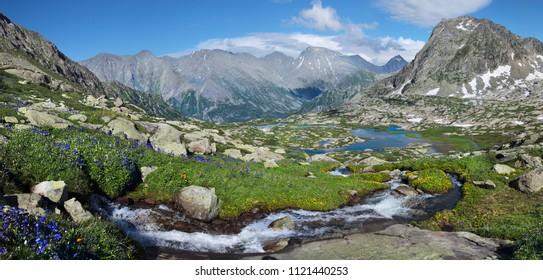 Amazing mountain valley, idyllic summer landscape, Altai