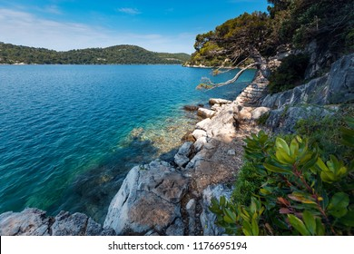 Amazing nature of beautiful island Mljet in Croatia.Europe