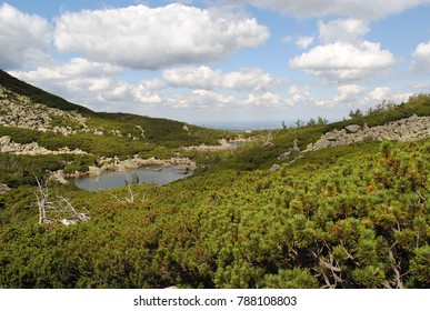 Amazing nature creation glacial lake in the high mountains surrounded by dead trees and green bushes, Beautiufl scenery top hills.