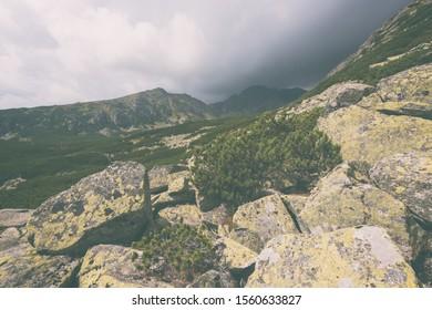 Amazing nature mountain landscape, bizarre stones on the tourist route in High Tatra mountains, natural vintage travel background, High Tatras, Slovakia (Slovensko)