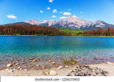 Amazing no wave lake with blue color with red pine trees and mountains in the background in a blue sky day in Canada