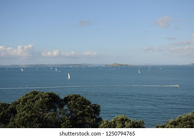Amazing ocean view from top spot at Waiheke island, near Auckland city in New Zealand