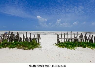 Amazing Paje beach, Zanzibar Island, Africa