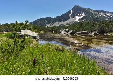Amazing panorama of Sivrya peak and Banski lakes, Pirin Mountain, Bulgaria