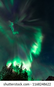 Amazing Phenomenon Aurora Borealis Green and Purple Northern Lights Shining Bright Above Trees in Bizarre Formation on Cold Alaska Starry Night Sky