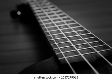 A amazing picture of a ukulele's fret board and strings in black and white