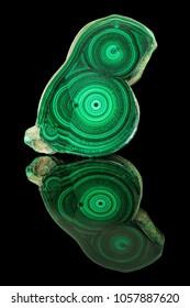 Amazing polished natural slab of green malachite mineral gemstone specimen gemstone macro isolated on black background. Closeup photo texture of green stone specimen