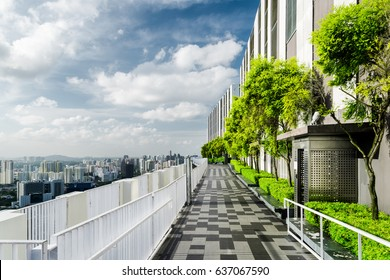 Amazing rooftop garden. Beautiful outside terrace with park and scenic city view. Modern benches under green trees along walkway. Urban eco design and mini-ecosystem. Landscaping in Singapore.