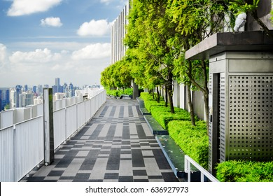 Amazing rooftop garden. Outside terrace with scenic park and beautiful city view. Modern benches under green trees along walkway. Urban eco design and mini-ecosystem. Landscaping in Singapore.