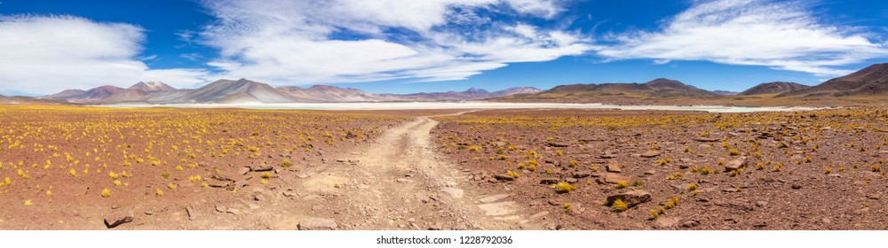 """The amazing """"Salar de Piedras Rojas"""" (Red Stones Saltlake) inside Atacama Desert at Chile in the Andes, an amazing and colorful landscape in the Chilean altiplano. From red to turquoise colors. Chile"""