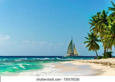 Amazing sandy exotic beach with high beautiful palm trees and white sailboat on the background, Punta Cana, Dominican Republic, Caribbean Islands, Central America
