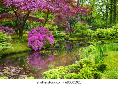 Amazing Scenery of Beautifully Toned and Colorful Japanese Garden in the Hague (Den Haag) in the Netherlands Straight After the Rain. Horizontal Image
