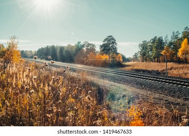 Amazing scenic landscape at early morning near rails in autumn forest. Railroad glitter in sunbeams. Dazzling bright sunlight in sunset sky. Wonderful sunrise. Railway in sunny rays. Lovely scenery.