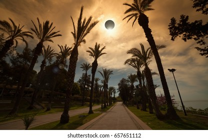 Amazing scientific background - total solar eclipse in dark red glowing sky, mysterious natural phenomenon when Moon passes between planet Earth and Sun. Palm avenue in resort city.