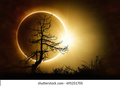 Amazing scientific background total solar eclipse, mysterious natural phenomenon when Moon passes between planet Earth and Sun, silhouette of withered tree.