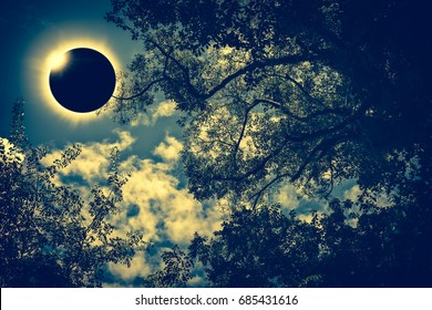 Amazing scientific natural phenomenon. Prominence and internal sun's corona. Total solar eclipse with diamond ring effect glowing on blue sky above silhouette of trees, serenity nature background.