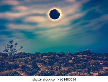 Amazing scientific natural phenomenon. Total solar eclipse with diamond rinf effect glowing on sky above wilderness area in forest. Serenity nature background. Cross process.
